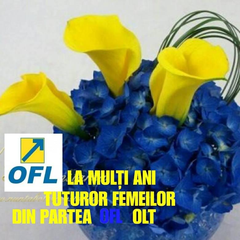 OFL Olt_n